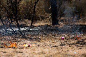 arizona-woodbury-fire-drone-use-2