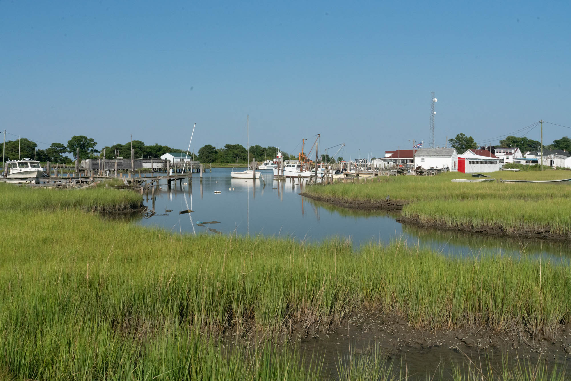 Scientists report that about a dozen communities on Maryland's Eastern Shore, including  Smith Island and Crisfield, already are coping with disruptive flooding. (Jordan Laird/News21)